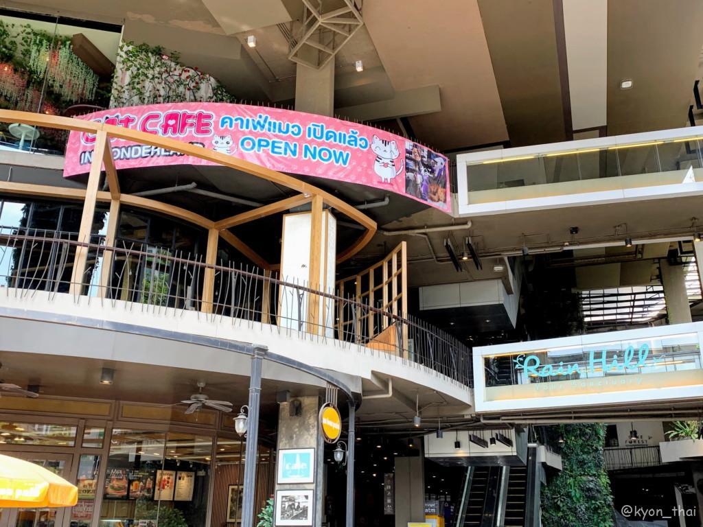 レインヒルの猫カフェ店舗外観